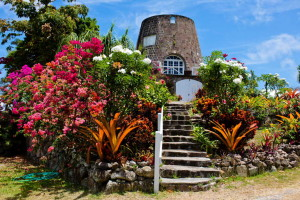 Nevis-Tourism-Authority_12